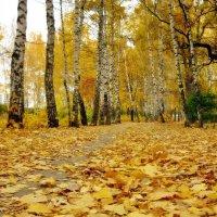 ...я ухожу в ту сказочную осень... :: Лена L.