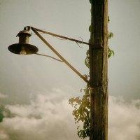 старый фонарь :: Владимир Нефедов