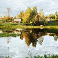 на берегу реки Тихвинки :: Сергей Кочнев