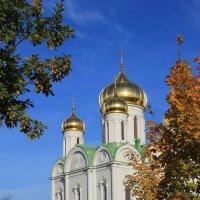 Вид на Екатерининский собор осенью... :: Tatiana Markova