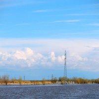 Нефтеюганск :: Алина Кин