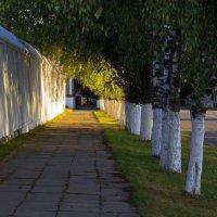 По дороге к солнцу :: Татьяна Петранова