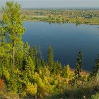 Поток осеннего золота :: Татьяна Белоусова