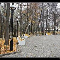 Осень в парке городском... :: Александр Иванов