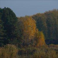 Осенняя :: Юрий Васильев
