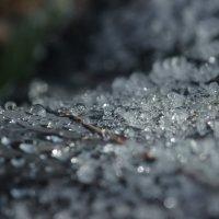 Вода и лед... :: Федор Кованский