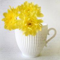 Три желтые хризантемы :: Галина Galyazlatotsvet
