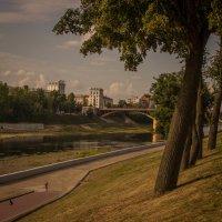Витебск в августе :: Людмила Комарова