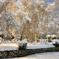 Осень- не осень,зима- не зима... :: galina tihonova