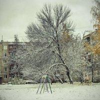 В нашей деревне( н.новгороде) первый снег.... :: Александр Зотов