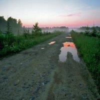Дорога домой. :: Виктор Давыдов