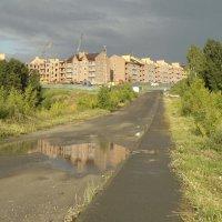 После дождичка :: Валентина Родина