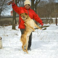 Сахара зимой, или новогодний танец :: Александр Белоконь