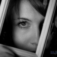 Движение взгляда... :: Виктор Твердун