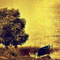 Лето золотое.... :: Ольга Сергеева