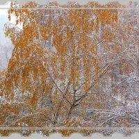 Золото русских берез в снежной пелене :: Нина северянка