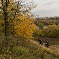 Осень ввалила, втопила, помчалась :: Ирина Данилова