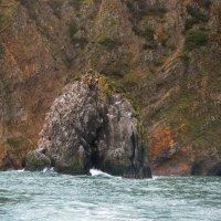 Камчатка 2014 Тихий океан :: Елена Решетникова