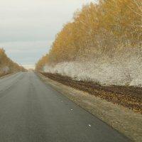 зима на пороге :: Кристина Воробьева