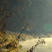 Солнце встает..... :: Kliwo