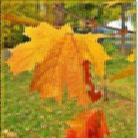 Осенний этюд.За стеклом :: Лидия (naum.lidiya)