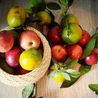 Яблоки и мандарины :: Ksenia Bahcha