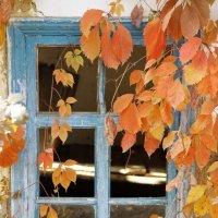 Забытый дом :: Lyudmila Petryashina