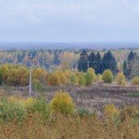Осень :: Нина Алексеева