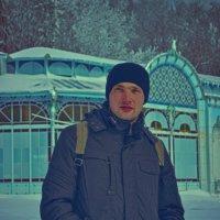 Зимний портрет :: Михаил Ефимов