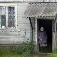 Соловчанка :: Сергей Яснов