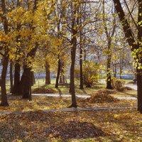 Осень :: Dasha Darsi