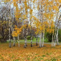 Осень.. :: Lena Suhanova