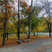 Осенний парк... :: Тамара (st.tamara)
