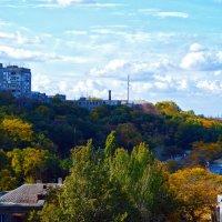 Осенняя Одесса :: Надежда Кульбацкая