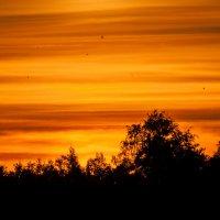 закат :: Злата Красовская