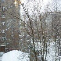 20 октября-первый снег. :: Татьяна Юрасова