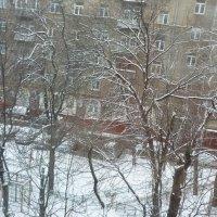 20 октября-привет от зимы. :: Татьяна Юрасова