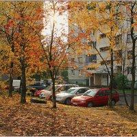 Тихий дворик в спальном районе. :: Роланд Дубровский
