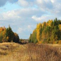 Ах, эта осень золотая... :: Павлова Татьяна Павлова