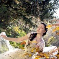 настроение осень :: Ольга Башняк