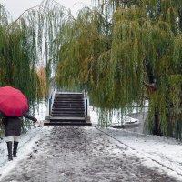Первый снег. У мостика. :: Анатолий Цыганок