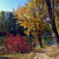 у озера :: юрий иванов