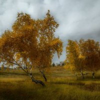 Осенний пейзаж :: Сергей Брагин