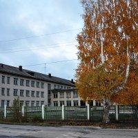Осень :: Надежда Иванова