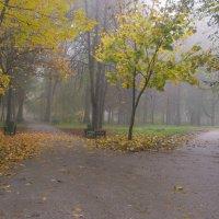 Осеннее настроение :: Бурлака Андрей