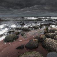 Осенний берег (Финский залив) :: Дима Хессе