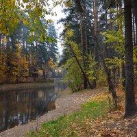 Старый пруд...3 :: Nikanor