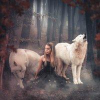 Девушка и волки :: Инна Рогач