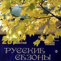 афиша :: Мария Климова