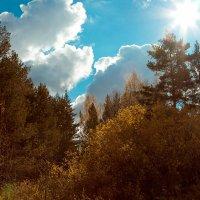 Осень Осень... :: Владимир Синицын
